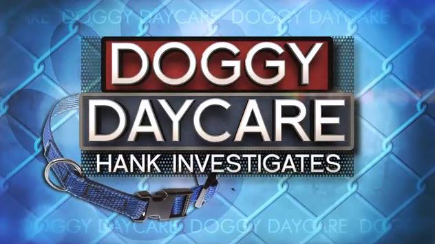 Has your doggie daycare been investigated?