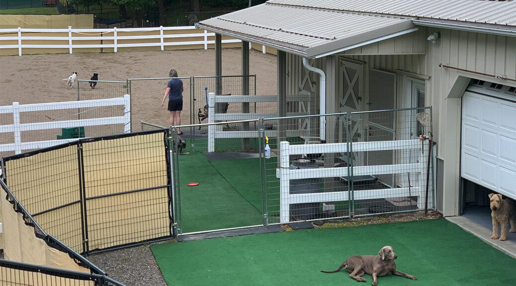 Seacoast Pets Dog Play Area
